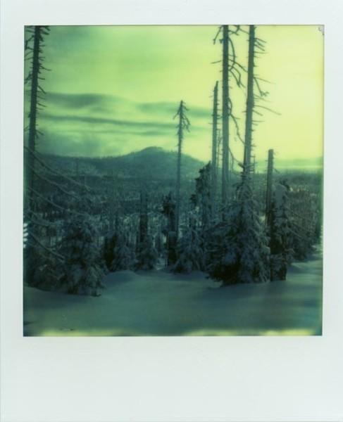 Blick zum Lusen über zugefrorenes Land