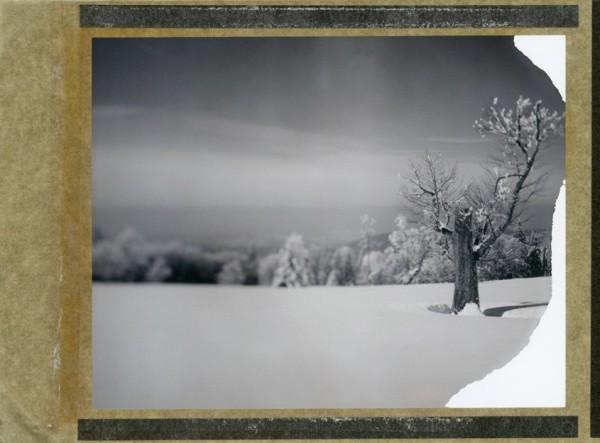(Wista Field 4x5 Camera, abgelaufener Polaroid 54 Film)