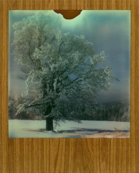 (Polaroid Camera SLR680, Impossible Film 680 Color Protection)