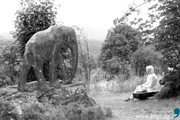 Im Skulpturengarten der Arche Heinz Theuerjahr bestaunt Hiltrud Salzer nicht nur die Bronze-Tiere, sondern genießt den herrlichen Ausblick auf den Bayerischen Wald. Fotos: Da Hog'n