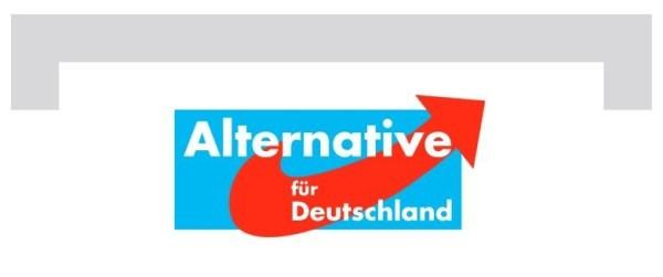 AfD-Kandidat Torsten Heinrich: \