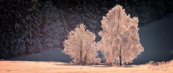 wintertag bei kirchl