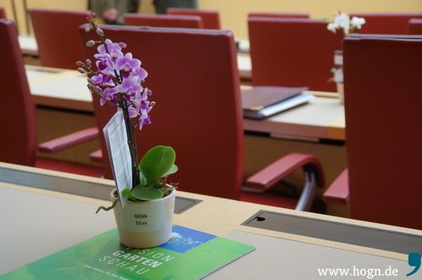 Der 6. Februar war der Tag der Orchideen im bayerischen Landtag: Werbung für Landesgartenschauen mit Informationen zur Umsetzung.