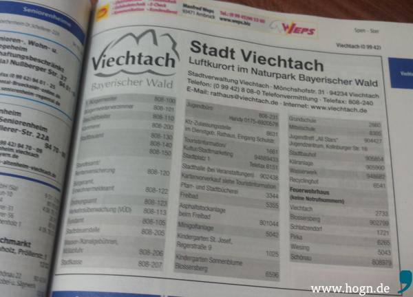 Die Stadt Viechtach wollte die Fragen des Hog'n nicht beantworten. / Foto Da Hog'n