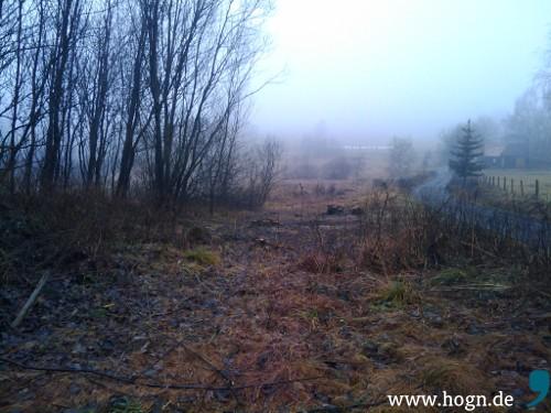 Hier schleppt sich der Schorsch mit fünf Kilo Speed über die Grenze: Wald bei Heinrichsberg, Tschechien.