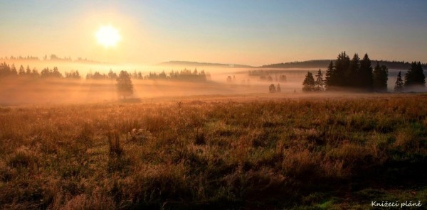Eine Entwicklung einer touristischen Strategie mit Vermarktung des grenzüberschreitenden Nationaparks Bayerischer Wald/Šumava kann nur von Vorteil sein. Foto: sumava.eu