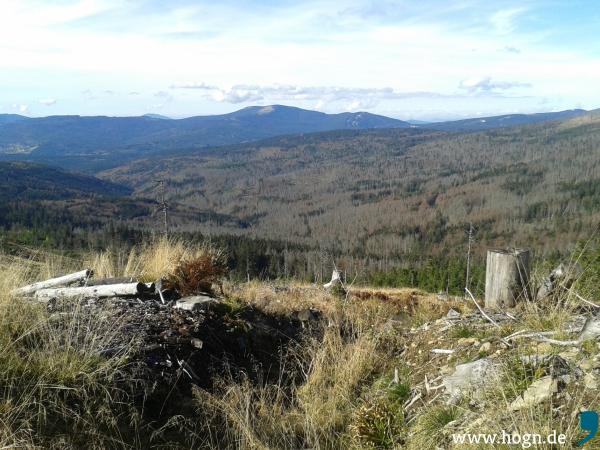 Die Borkenkäfer haben im Bärnloch, nördlich von Zwieselerwaldhaus, innerhalb von fünf Jahren einen Großteil der Fichtenbestände zum Absterben gebracht.
