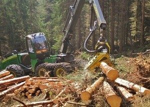 Forstbetrieb Sippl_300_215