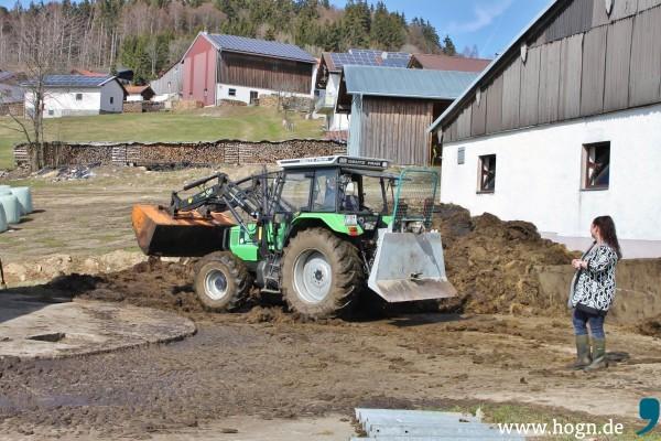 Landwirtin_Tanja Blöchl_Zwölfhäuser (75)