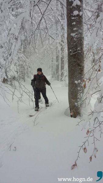 winter edition dreisessel 2017