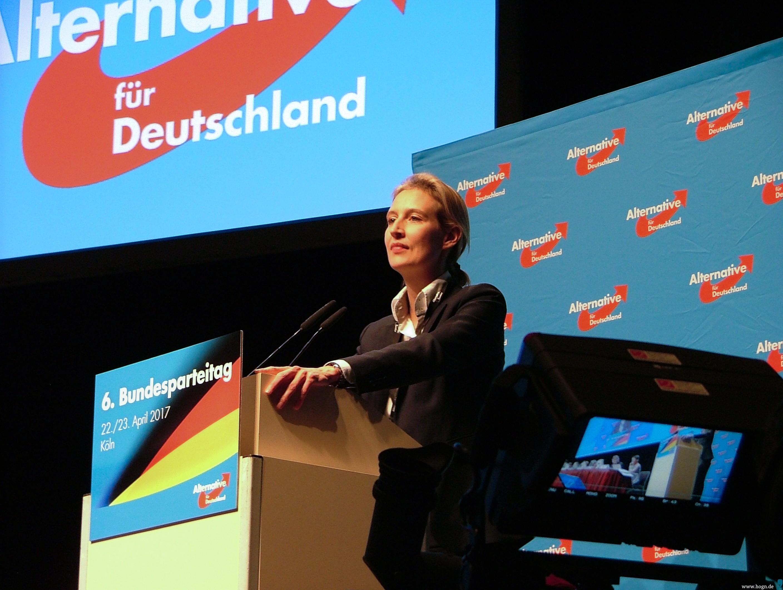 Afd Bundesparteitag Köln